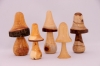 Mushrooms,Various woods, Roger Pitts