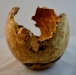 George Goertz - Bowl side view - Maple Burl - Oil